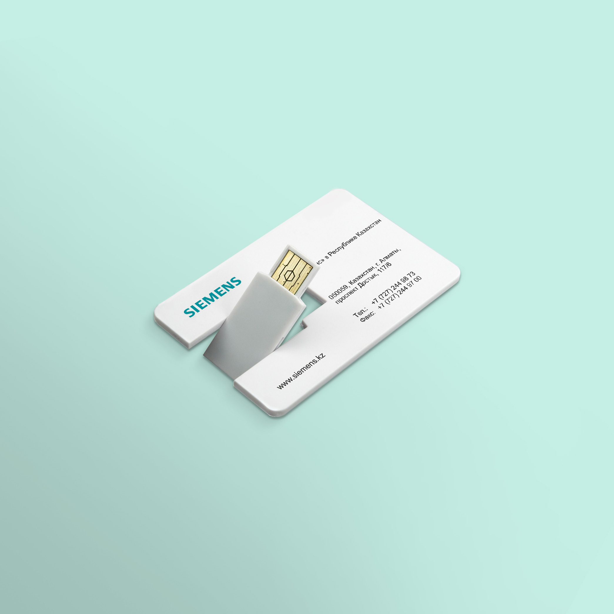 USB Flash Siemens (1)